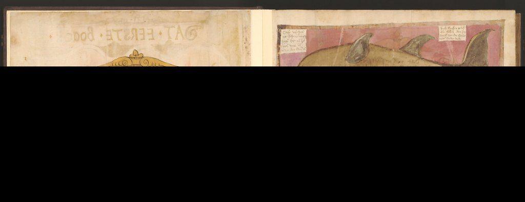 whale-book-coenensz-adriaen-p6.jpg