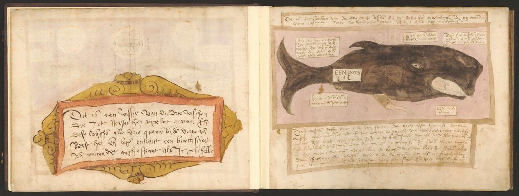whale-book-coenensz-adriaen-p9.jpg