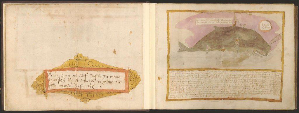 whale-book-coenensz-adriaen-p10.jpg
