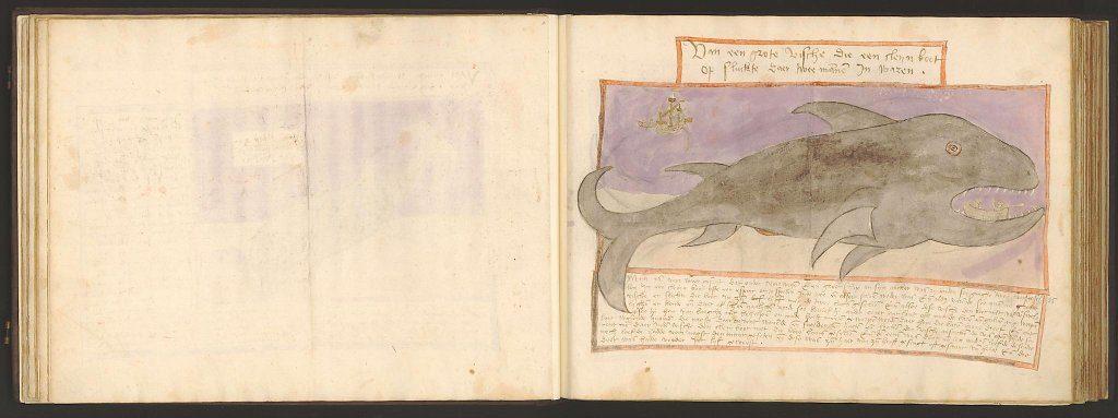whale-book-coenensz-adriaen-p30.jpg