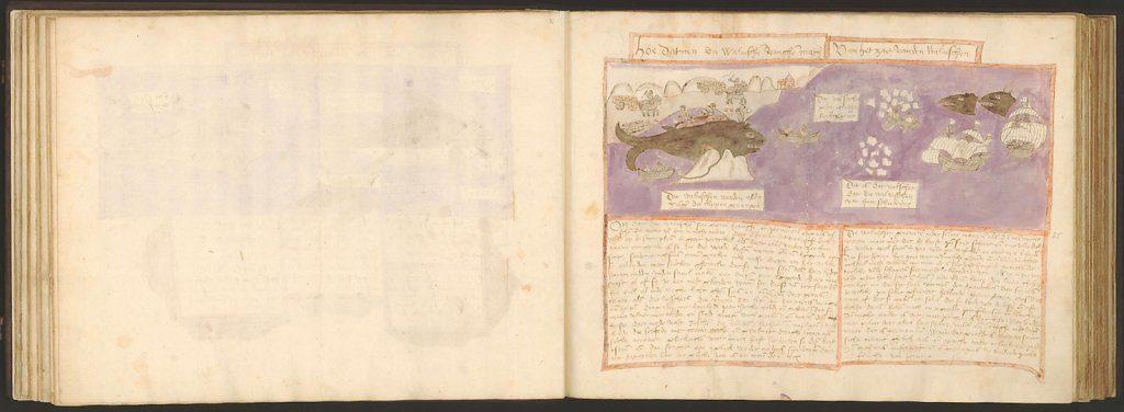 whale-book-coenensz-adriaen-p41.jpg