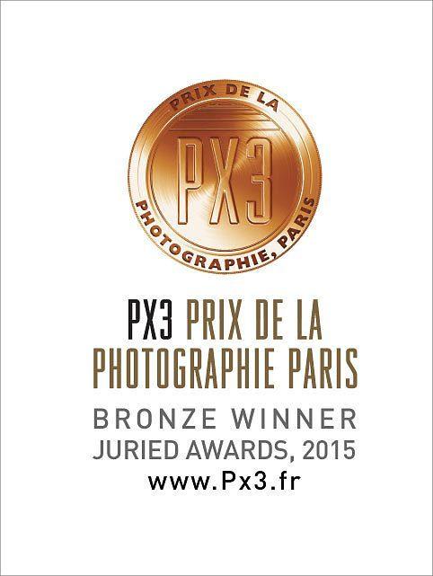 Px3-2015-Bronze.jpg